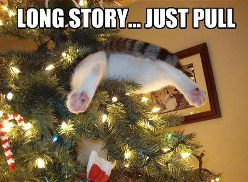 Long story, just pull - cat in the Christmas tree