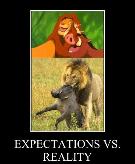 Expectations versus reality - Lion King - Pumba and Simba