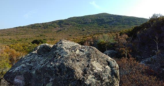 Capraia Isola - trail to Zurletto Beach 1