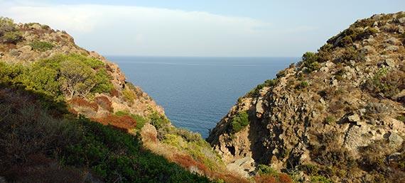 Capraia Isola - trail to Zurletto Beach 2