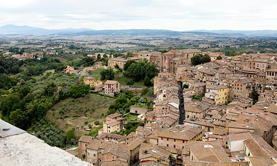 View of Siena from the top of the Torre del Mangia