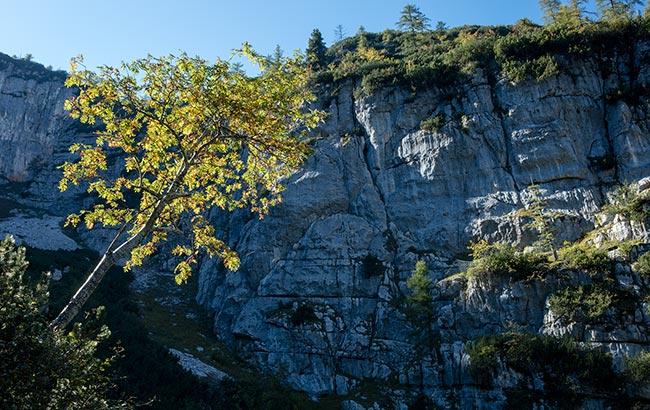 Hallstatt / Obertraun - Dachstein Krippenstein - majestic mountain face near Mammoth Cave